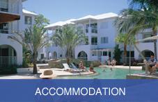accommodation rh visitcairns com au