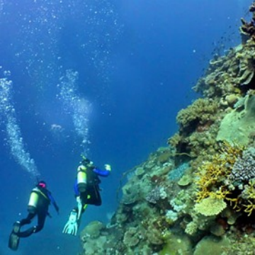 Visit Cairns Liveaboard Learn To Dive Courses